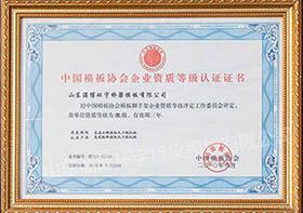 企业资质等级认证证书.jpg